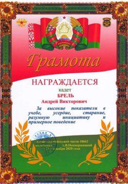 2020_12_23_30ЖД_Брель